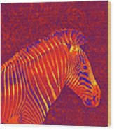 Red Zebra Wood Print