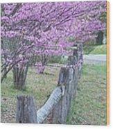 Redbud And Fence Wood Print