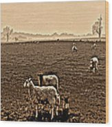Redeemed By The Lamb Wood Print