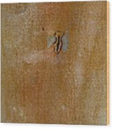 Redgum Tree Wood Print