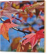 Reds Of Autumn Wood Print