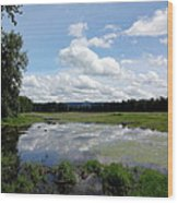 Redtail Lake At Steigerwald Natinal Wildlife Refuge Wood Print by Lizbeth Bostrom
