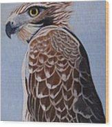 Redtail portrait Wood Print