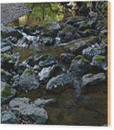 Redwood Creek Wood Print