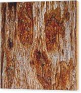 Redwood Spirit Wood Print