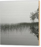 Reeds And Shore In The Mist Wood Print