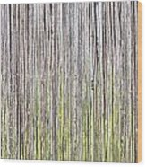 Reeds Background Wood Print