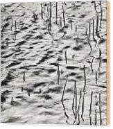 Reeds In Ripples Wood Print