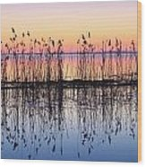 Reeds Reflected In Water At Dusk Ile Wood Print