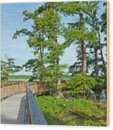 Reelfoot Lake Wood Print