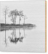 Reflected Calm Wood Print
