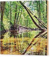 Reflected Forests Wood Print