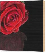 Reflected Red Rose Wood Print