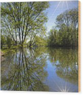 Reflected Star Wood Print