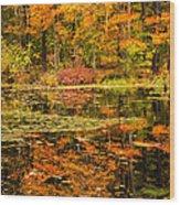 Reflecting Colors Wood Print