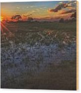 Reflecting On A Duba Plains Sunset Wood Print