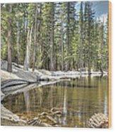reflecting pond 2 Carson Spur Wood Print
