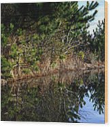 Reflecting Puddle At The Beach Wood Print