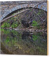 Reflecting While Fishing Wood Print