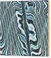 Reflection 1 Wood Print by Jim Wright