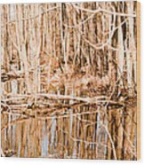 Reflection 2 Wood Print by BandC  Photography