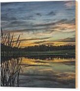 Reflection At Sunset With Cattails Wood Print