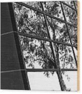 Mirror Image Palm Springs Wood Print