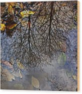 Reflection In A Puddle Wood Print