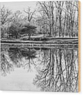 Reflection In Black And White Wood Print
