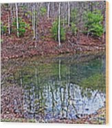Reflection In The Lake Wood Print