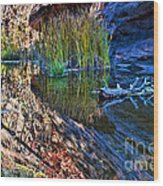 Reflection In The Water Wood Print