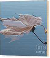 Reflection Wood Print by Jane Ford