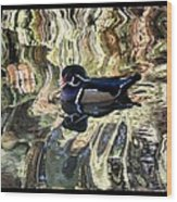Reflection Of A Wood Duck Wood Print