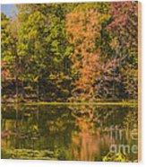 Reflection Of Autumn Wood Print