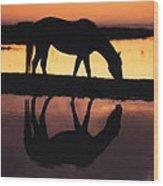 Reflection Of Life Wood Print