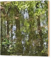 Reflection Of Woods Wood Print