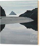 Reflection On Bixby Beach Big Sur California By Pat Hathaway Wood Print