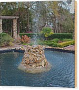 Reflection Pond At Ravine Gardens State Park Wood Print