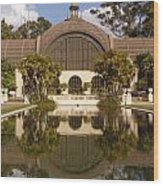 Reflection/lily Pond, Balboa Park, San Diego, California Wood Print