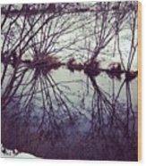 #reflection #water #river #bush #pretty Wood Print