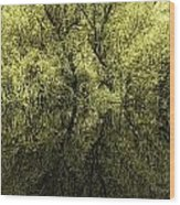 Reflections 8 Wood Print