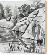 Reflections At Elephant Rocks State Park No I102 Wood Print