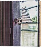 Reflections At The Landmark Des Moines Washington Wood Print