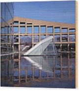 Reflections At The Library Wood Print