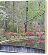Reflections Wood Print by Eggers Photography