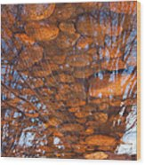 Reflections Wood Print by Eric Rundle