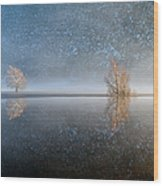 Reflections In A Lake In Winter, French Wood Print