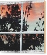 Reflections In An Old Window Wood Print