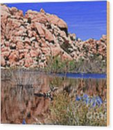 Reflections In Barker Dam By Diana Sainz Wood Print