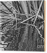 Reflections In Black And White Wood Print